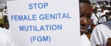 2012_0206_stop_fgm_m_0